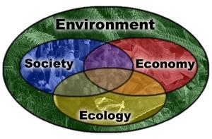 Ecology_Society_Economy_diagram_Environment_background