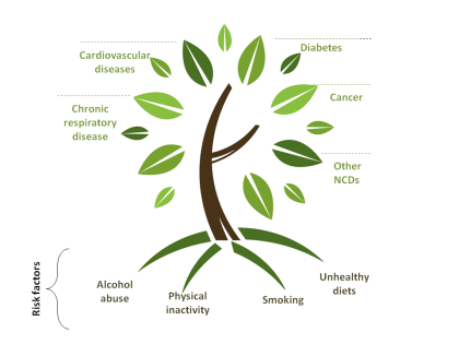 Non-communicable diseases diagram