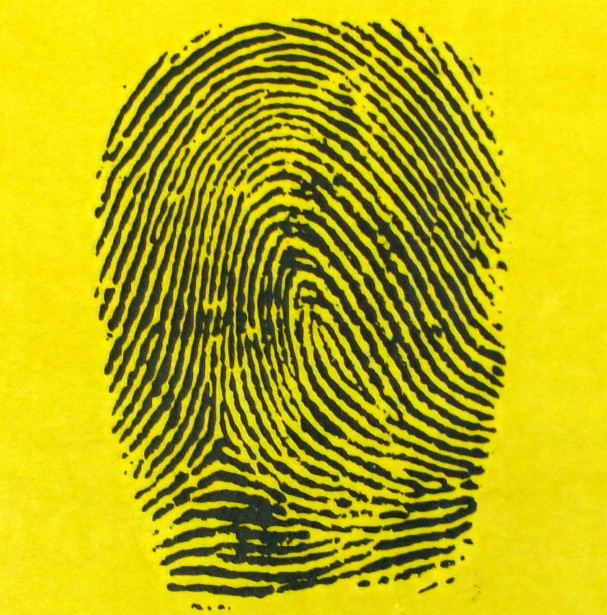 fingerprint-fingerprints